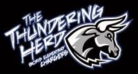 Thundering Herd graphic design