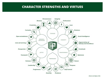 Character strength web